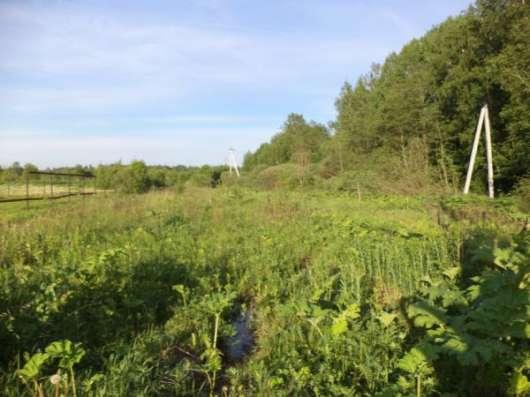 Продается земельный участок 16 соток в д. Тропарево (под ЛПХ), Можайский р-он,110 км от МКАД по Минскому шоссе. Фото 2